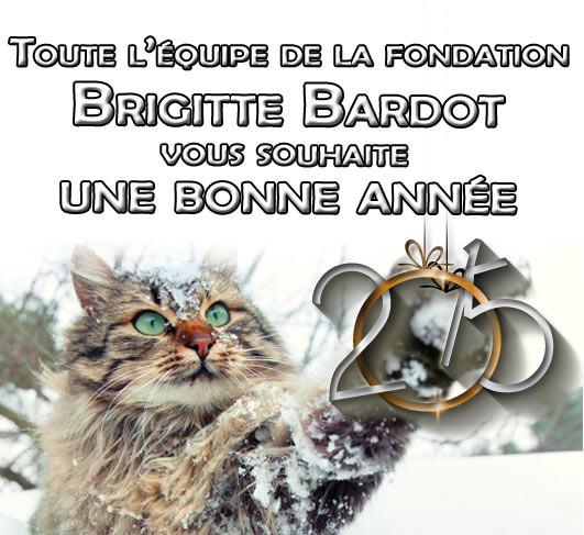 Voeux -Fondation Brigitte Bardot